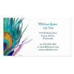 Peacock feather Double-Sided standard business cards (Pack of 100)