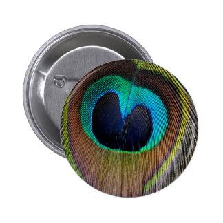 Peacock Feather Button