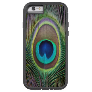 Peacock feather iPhone 6 case