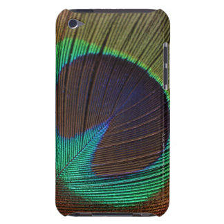 Peacock feather iPod touch cases