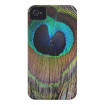 Peacock Feather Case Mate iPhone 4 ID Case iPhone 4 Case-Mate Case