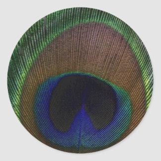 Peacock Feather Classic Round Sticker