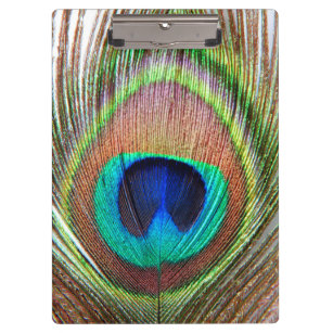 Superbe Peacock Feather Clipboard