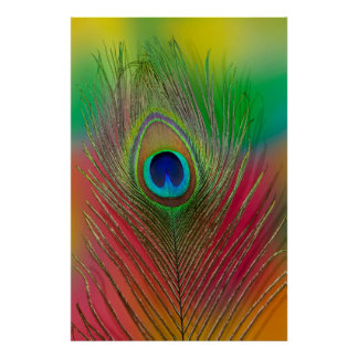 Peacock feather close-up poster