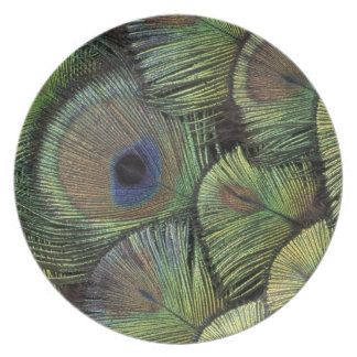 Peacock feather design 2 plates