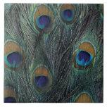 Peacock feather design ceramic tiles