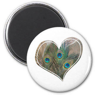 Peacock Feather Double Heart Magnet