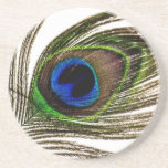Peacock Feather Drink Coasters