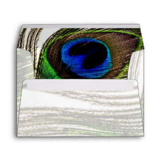 Peacock Feather Envelope