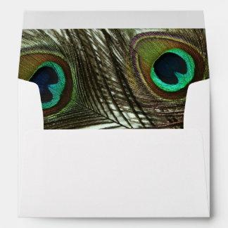 Peacock Feather Envelopes