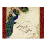Peacock & Feather Formal Thank You Note Burgundy Post Card