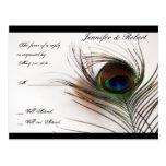 Peacock Feather Glamor RSVP Postcard