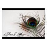 Peacock Feather Glamor Thank You Card