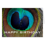 Peacock Feather Happy Birthday Card