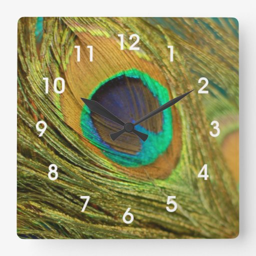 Peacock Feather Home Decor Wall Clock Zazzle