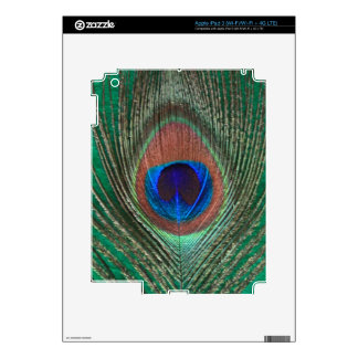 Peacock Feather iPad 3 Skin