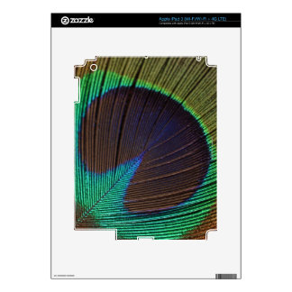 Peacock feather iPad 3 skins