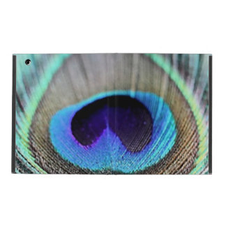 Peacock Feather iPad Folio Case