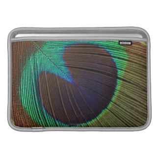 Peacock feather sleeves for MacBook air