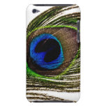 Peacock Feather iPod Touch Covers