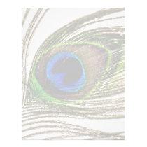Peacock Feather Letterhead