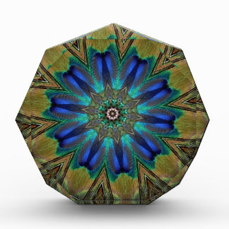 Peacock Feather Mandala Kaleidoscope Acrylic Award