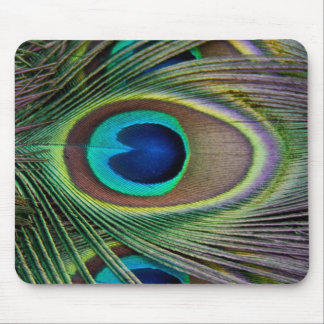 Peacock feather mousepads