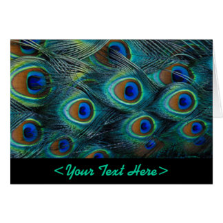 Peacock Feather Note Card