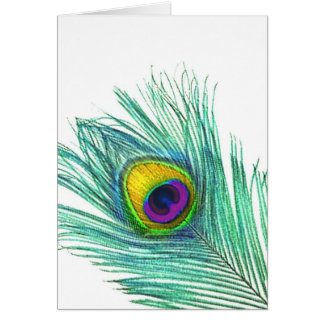 Peacock Feather note cards