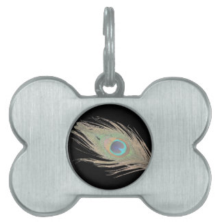 Peacock Feather on Black Pet Tag