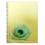 Peacock Feather on Gold Notebooks