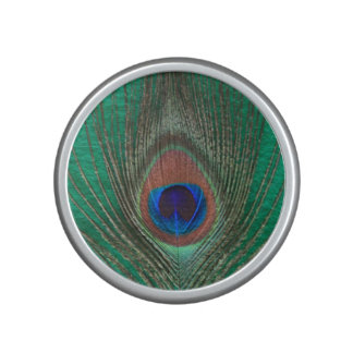 Peacock Feather on Green Speaker