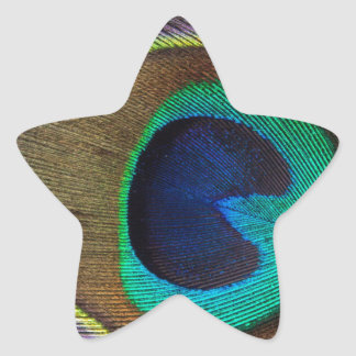 Peacock Feather On Left Side Close-Up Star Sticker