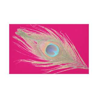 Peacock Feather on Pink Canvas Print