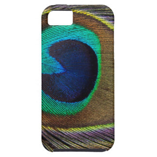 Peacock Feather On Right Side Close-Up iPhone SE/5/5s Case