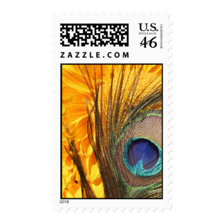Peacock feather on sunflower stamps