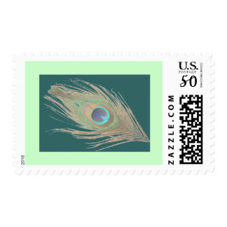 Peacock Feather on Teal with a Green Border Postage