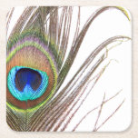 """Peacock Feather Paper Coasters<br><div class=""""desc"""">Peacock Feather</div>"""