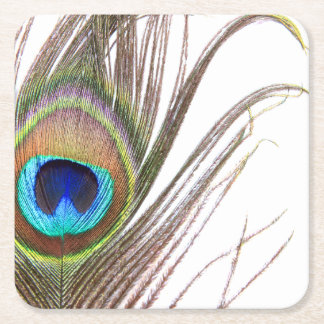 Peacock Feather Paper Coasters Square Paper Coaster
