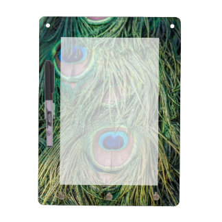 Peacock Feather Pattern Dry Erase Board