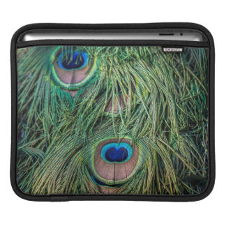 Peacock Feather Pattern iPad Sleeve