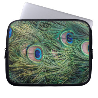 Peacock Feather Pattern Laptop Sleeve