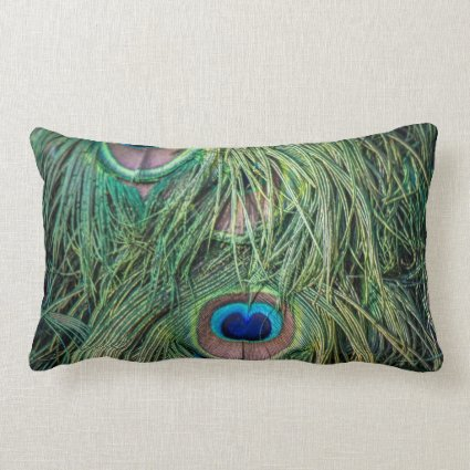 Peacock Feather Pattern Pillow