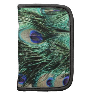 Peacock Feather Pattern Organizer
