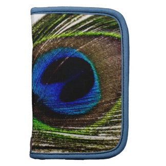 Peacock Feather Planners