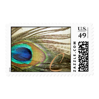 Peacock Feather Postage
