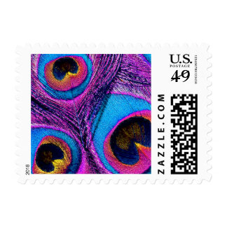Peacock Feather Postage Stamps - Blue Purple Pink