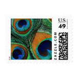 Peacock Feather Postage Stamps - Green Teal Blue