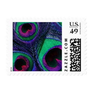 Peacock Feather Postage Stamps - Teal Purple Blue