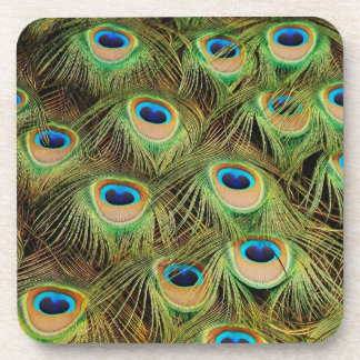 Peacock feather print coasters